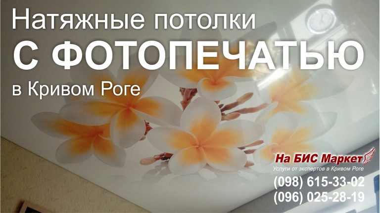 http://nabisinfo.com/_pu/2/23577772