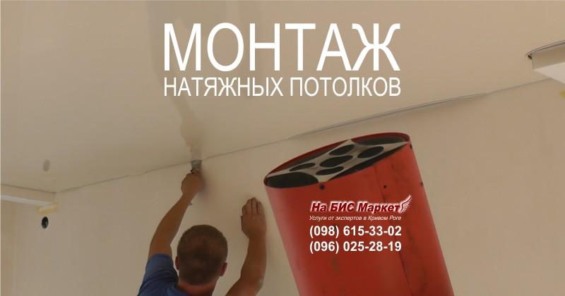 http://nabisinfo.com/_pu/3/76293931